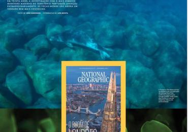 Las focas de Madeira están en National Geographic
